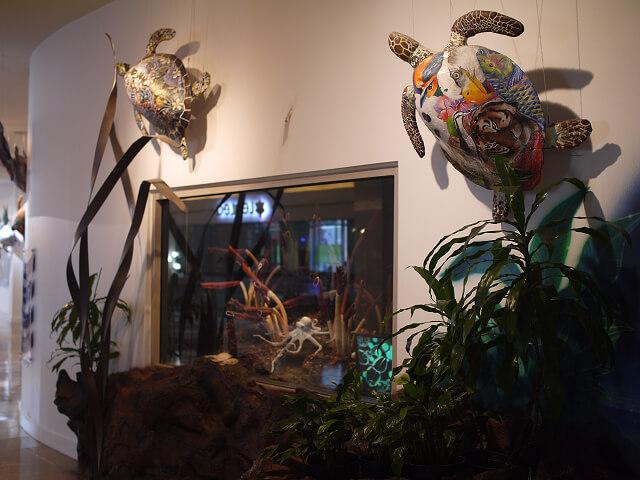 亀の甲羅アトリエ画像