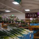 道の駅 但馬のまほろば 旬の野菜や手作りパン 主婦に嬉しいお土産がいっぱい。