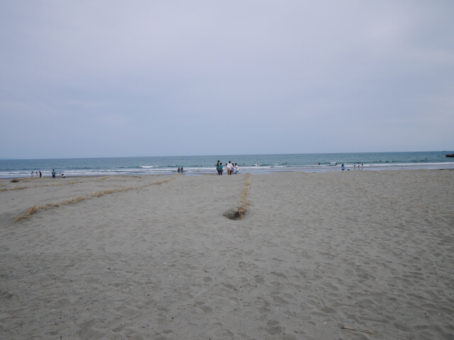 静波海岸画像