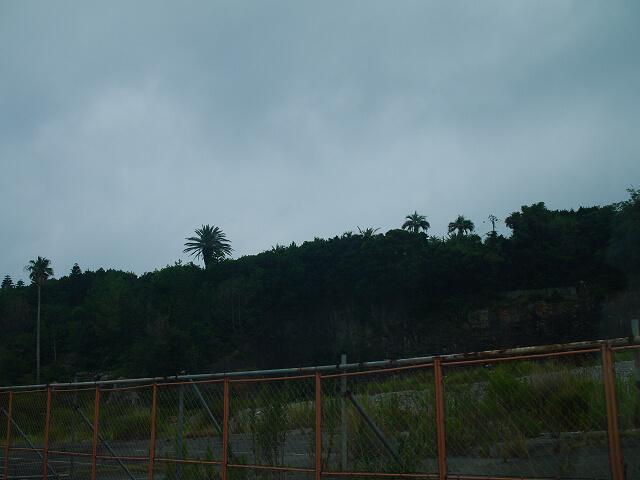 県道34号線沿い ハマブランカ跡画像