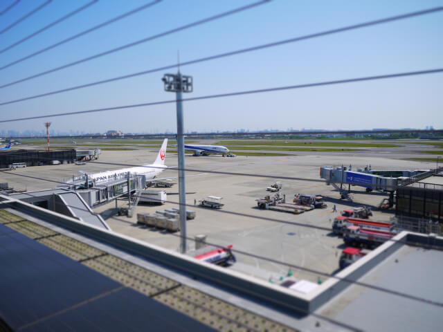 伊丹空港展望デッキ画像