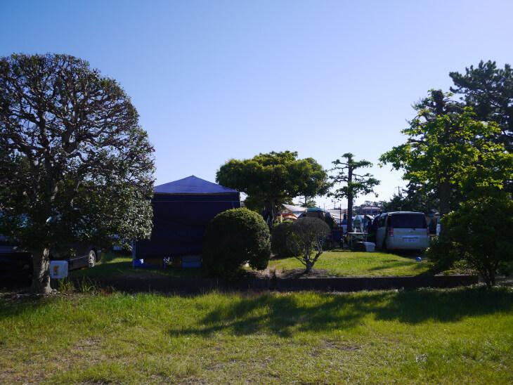 静波キャンプグランド Dサイト画像