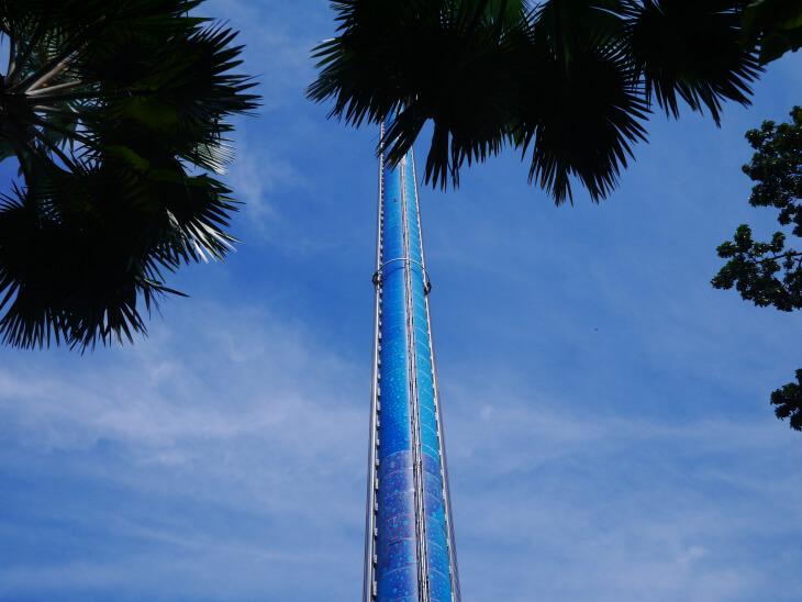 タイガー・スカイ・タワー画像