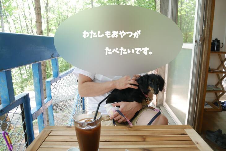 青木湖畔沿いのboathouse cafe テラス席画像