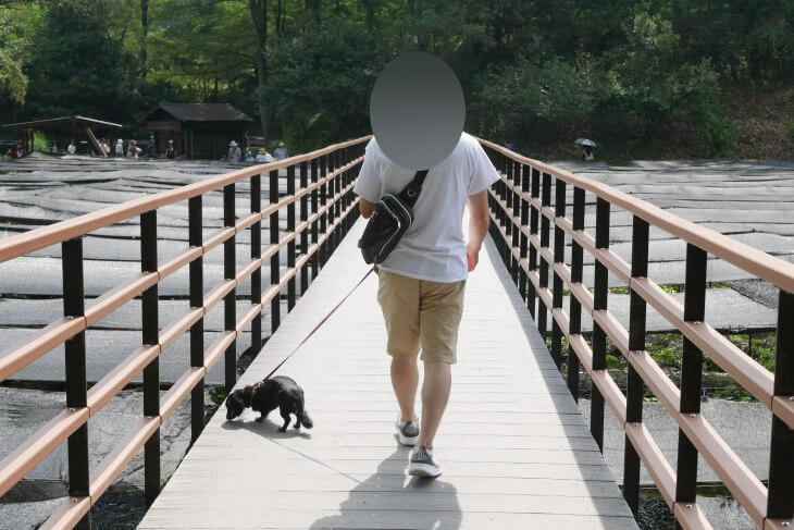 安曇野大王わさび農場内にある橋を渡るワンコ画像