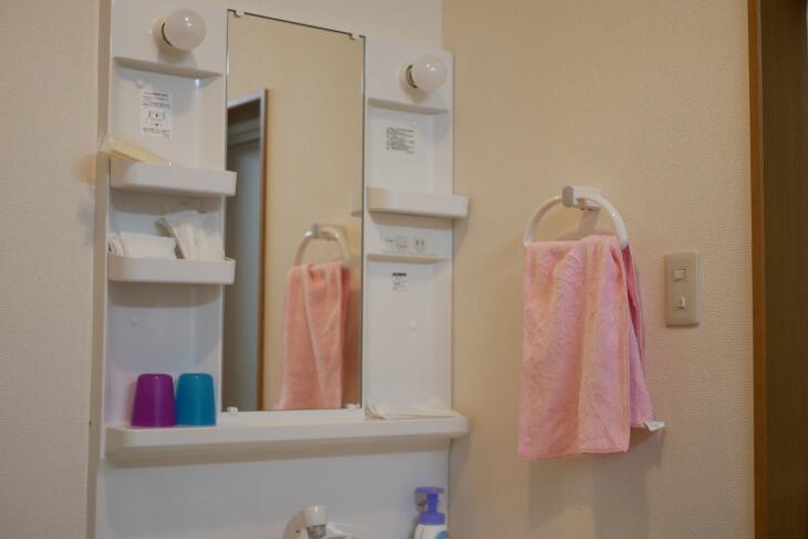 ペット専用コテージ 18平米の洋室にある独立洗面台画像