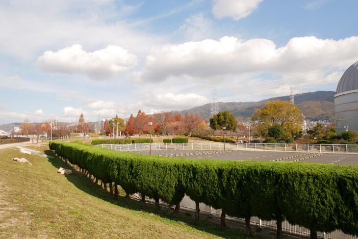 花園中央公園 第1駐車場に沿った道画像